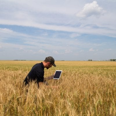 Agronomist with a Tablet in an Agricultural Field